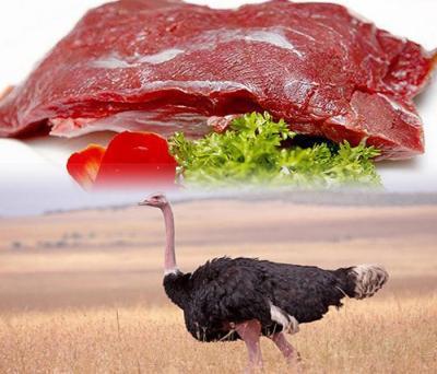 Mua Bán Thịt Đà Điểu